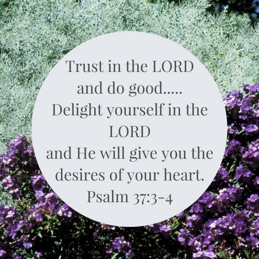 Trust in the LORD,
